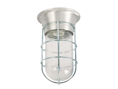 Easy Mount Incandescent Canopy Lighting Fixture - With Wire Guard